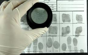 Pack de 3 Cursos online: Especial Criminología y Perfilación Criminal