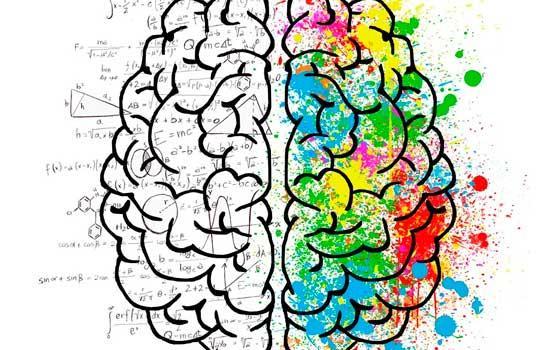 Especialista en Descodificación Neuro-emocional Adaptativa