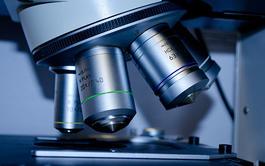 Curso online de Microbiología Clínica