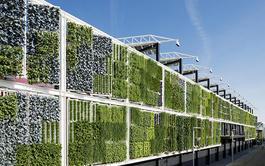 Curso online de Iniciación a la Jardinería Vertical